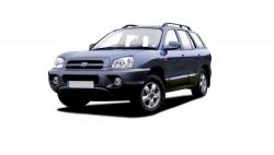 Автомобильные коврики EVA Hyundai Santa Fe I (2001-2007)