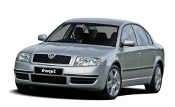 Автомобильные коврики EVA Skoda Superb I (2001-2008)