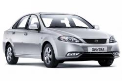 Автомобильные коврики EVA Daewoo Gentra II (2013-2015)